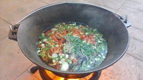 Wok con la minestra del pesce Fotografia Stock