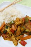 Wok food Asia. With carrots, pumpkin, chicken, germs, paprika and rice Stock Images