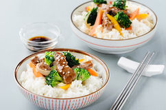 Wok fried beef vegetables and rice Royalty Free Stock Images