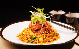 Wok fried Szechwan chicken on a bed of noodles Royalty Free Stock Image