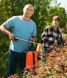 Wokers bespoten bomen van insecten royalty-vrije stock afbeeldingen