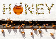 Wokers de miel images stock