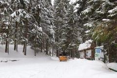 Wokoło śnieżnego lasu i gór obraz stock