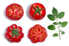 Wokoło i żebrujący pomidory, liść, odgórny widok, ścieżki Obraz Stock