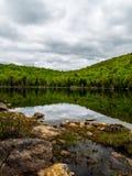 Wolderness-Teich Stockbild