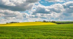 Wolds de Lincolnshire Fotos de Stock