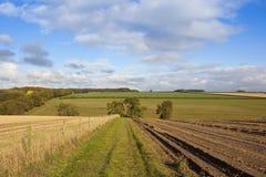Wolds de Yorkshire bridleway Foto de Stock