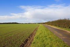 Wolds di Yorkshire bridleway Fotografia Stock