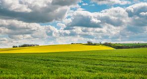 Wolds du Lincolnshire Photos stock