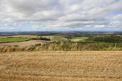 Wolds harvest time Stock Photos