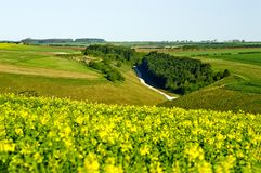 Wolds orientali di Yorkshire Fotografia Stock Libera da Diritti