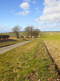 Wolds road Royalty Free Stock Photography