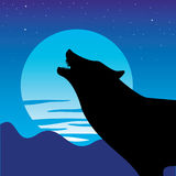 Wolf. Vector illustration of a wolf Stock Photo