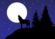Wolf. Illustration of a wolf howling at the moon Stock Photo