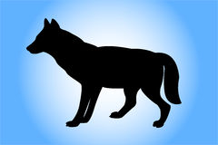 Wolf. Silhouette Stock Photo