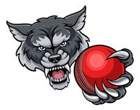 Wolf Holding Cricket Ball Mascot Stock Photo