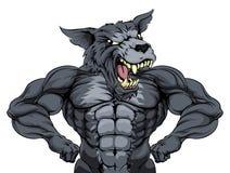 Wolf Animal Sports Mascot Arkivfoto