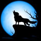 Wolf auf dem Mondhintergrund Lizenzfreies Stockfoto
