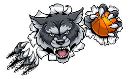 Wolf Basketball Mascot Breaking Background Photos libres de droits