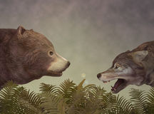 Wolf and Bear. Dialogue. Royalty Free Stock Images