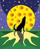 Wolf and big moon. Stock Image