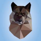 Wolf on blue background Stock Image