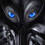 Wolf with blue eyes abstract illustration. Wolf with blue eyes abstract, black and white illustration Royalty Free Stock Photography