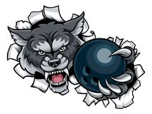 Wolf Bowling Mascot Breaking Background Photo stock