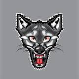 Wolf Cartoon Royalty Free Stock Image