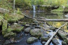 Wolf Creek秋天 库存照片