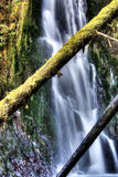 Wolf Creek Falls Stock Photo