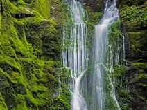 Wolf Creek-waterval in Appalachia Tennessee stock foto