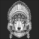 Wolf Dog Cool animal wearing native american indian headdress with feathers Boho chic style Hand drawn image for tattoo. Wolf Dog Hand drawn image for tattoo Royalty Free Stock Photos