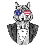 Wolf Dog Hipster animal Hand drawn image Royalty Free Stock Photography