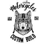 Wolf Dog Biker, motorcycle animal. Hand drawn image for tattoo, emblem, badge, logo, patch, t-shirt. Wolf Dog Hand drawn image for tattoo, emblem, badge, logo vector illustration