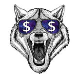 Wolf Dog Wild animal wearing glasses with dollar sign. T-shirt print with wild animal wearing glasses with dollar sign vector illustration