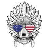 Wolf Dog Wild animal wearing indiat hat with feathers Boho style Stock Photo