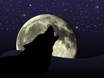 Wolf door volle maan Royalty-vrije Stock Foto