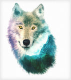 Wolf double exposure illustration. The Wolf head on white background double exposure illustration. Retro design graphic element. This is illustration ideal for a Stock Photography