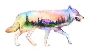 Wolf double exposure illustration. The Wolf on white background double exposure illustration. Retro design graphic element. This is illustration ideal for a Stock Images