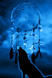 Wolf and dream catcher Royalty Free Stock Image