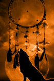 Wolf and dreamcatcher. Lone wolf howling with a dream catcher in background Royalty Free Stock Images