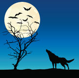 Wolf and the dried up tree Royalty Free Stock Images