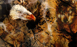 Wolf and eagle color painting, feathers background, multicolor collage illustration. White lightning Royalty Free Stock Photos