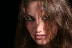 Free Wolf Eyes Stock Photos - 2856113