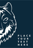 Wolf face. Illustrator design .eps 10 Stock Photography
