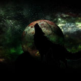 Wolf and Full Moon Stock Photography