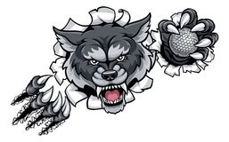 Wolf Golf Mascot Breaking Background Photos stock