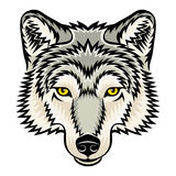 Wolf head. A Wolf head logo. This is vector illustration ideal for a mascot and tattoo or T-shirt graphic Stock Images
