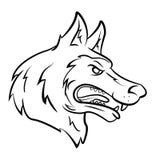 Wolf Head Foto de archivo libre de regalías